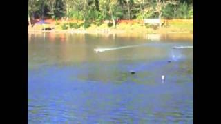 Weltmeisterschaft der Modellrennboote am Waldsee (Fornsbach bei Murrhardt)