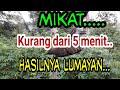 Mikat Tidak Sampai  Menit Hasilnya Lumayan  Mp3 - Mp4 Download