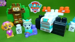 Paw Patrol Skye and Everest Toys Ionix Jr Building Blocks STEM Constuction Toys for Girls Toddlers