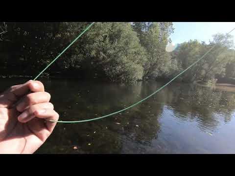 Pesca Con Mosca - Una Gran Trucha Me Quiere Robar La Captura 😂😂
