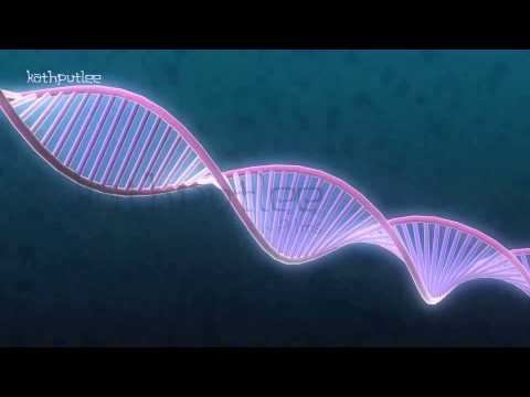 Cancer Recovery Animation - Yuvraj Singh