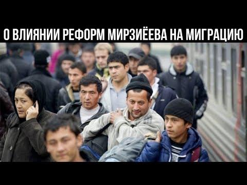 Экспорт о влиянии реформ Мирзиёева на миграцию узбекистанцев в РФ