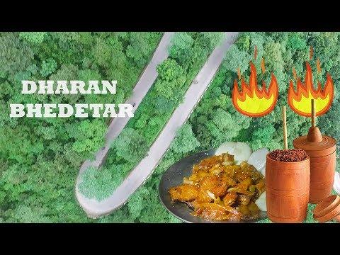 | DHARAN | Dasain Vlog 2017 | Bhedetar