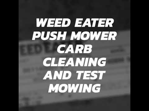 Weed Eater Classic Briggs Carb Cleaning & Test Mowing