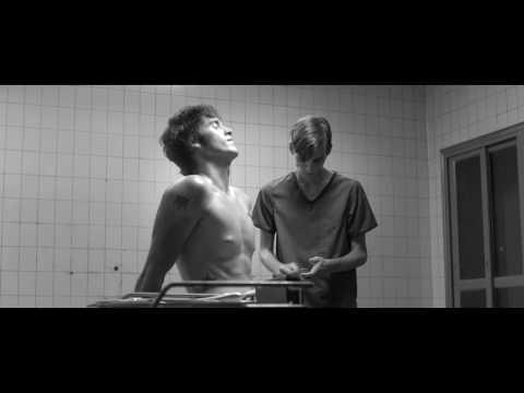 Gay couples (the neighbourhood  – a little death)