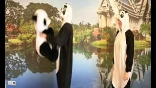 Пижама кигуруми kigurumi Панда карнавальный костюм Возвращение Панды(, 2014-11-24T06:28:47.000Z)