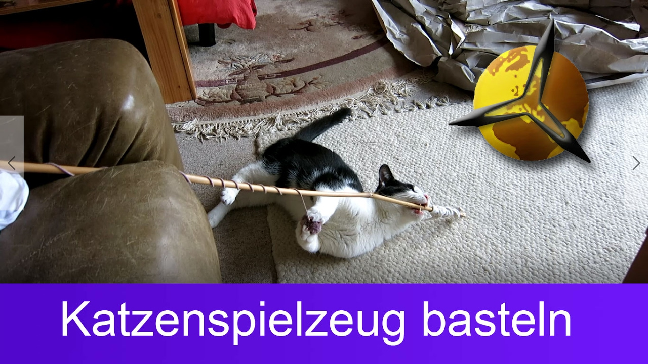 Katzenspielzeug Selber Basteln Bauen