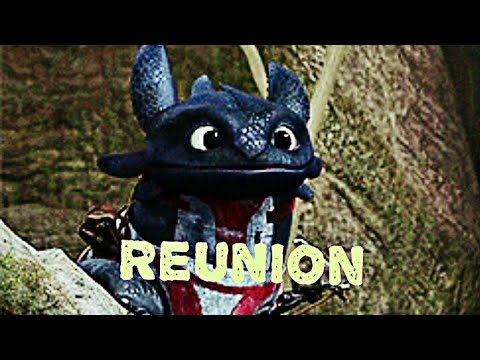 Reunion ~ Toothless and Hiccup