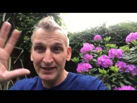 Christopher Eccleston reprises Doctor Who role to wish Blaine & Liam well on their wedding day.