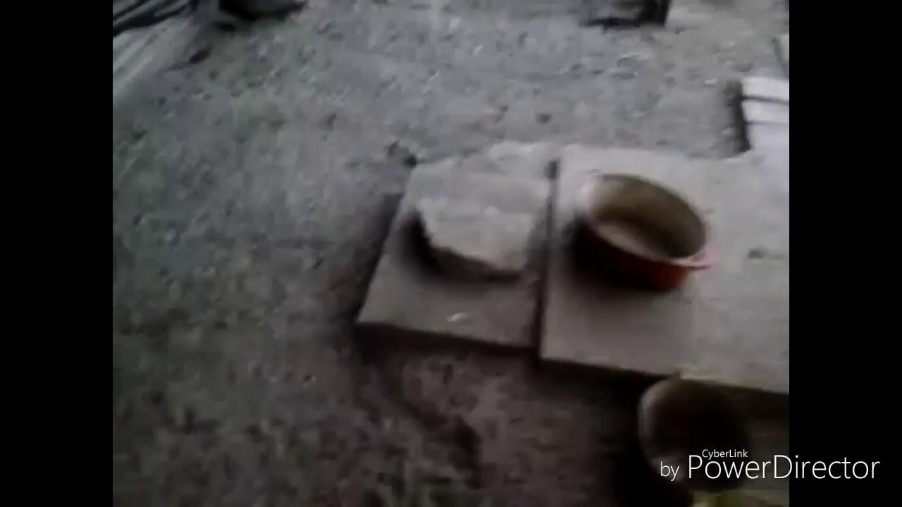 Tuto 2 comment faire pour que les poules se d barassent des puces poux et acariens youtube - Comment se debarrasser des puces de parquet ...