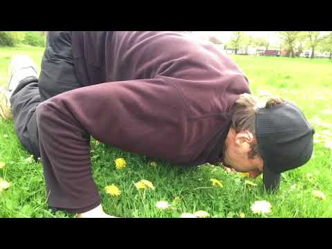 How to sniff the flowers properly