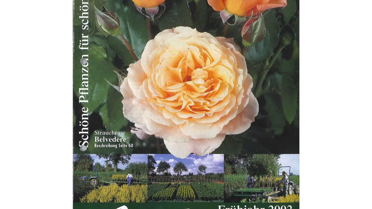 Garten Schlüter Katalog   Pflanzen Für Ihren Garten
