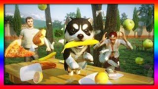ВЕСЕЛЫЙ ЩЕНОК #1 СИМУЛЯТОР СОБАКИ Веселая игра как мультик DOG SIMULATOR для детей от ДЕТСКИЕ ИГРЫ