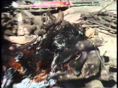 Shocking Asia 1   1974-Documentary Education-