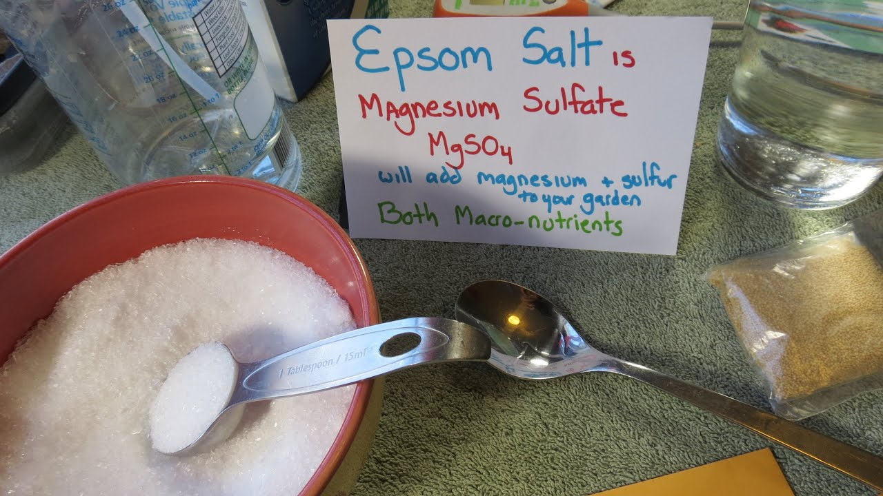 Mfg 2015 why how to use epsom salt in your vegetable garden recipes a foliar feed youtube for How to use epsom salt in garden