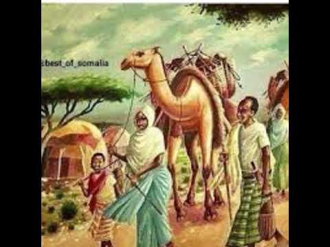 the culture of  somalia¥