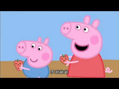 Peppa Pig Cantonese 粉紅豬小妹 粵語 S1 D2 - YouTube