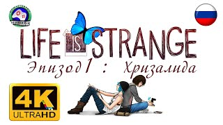 Life is Strange Эпизод 1 Хризалида 4K 60FPS ИГРОФИЛЬМ 18+ русская озвучка сюжет фантастика