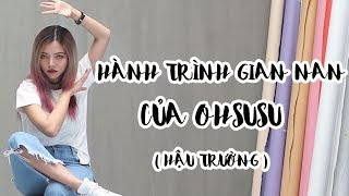 Hành Trình Làm Streamer & Youtuber Gian Nan Của Ohsusu