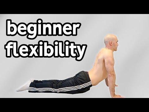 Beginner Stretches For Flexibility (Full Routine)