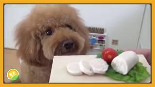 Làm món gà dăm bông tí hon - Chicken patties