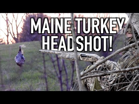 Maine Turkey Kill! | The Maine Hunt