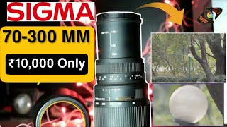 Sigma DG 70-300mm f 4 - f 5 6 Macro Lens Review Best lens for Nikon Canon Sony Lumix