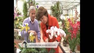 """Emission """"Comment ca va bien"""" - France 2 - 12/07/2012 - Orchidées Vacherot Lecoufle"""