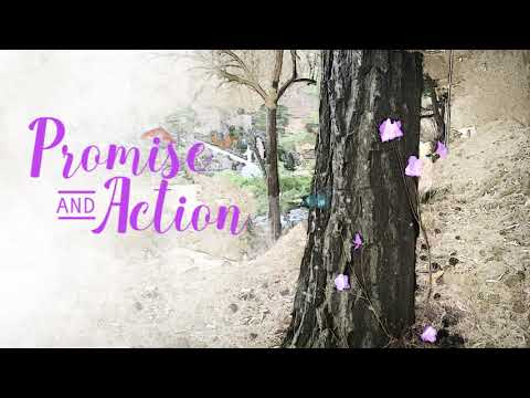 PROMISE AND ACTION (IETT-R)