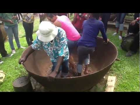 Dancing the Coco (Cacao) Grenada Intangible Cultural Heritage