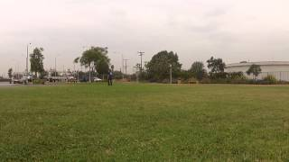 Pit Bull Off Leash Obedience Training Los Angeles & San Diego   Sandlot K9 Services