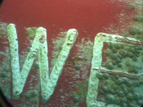 UNDERWATER SURVEY / M.v CLIPPER VIKING Chap 3