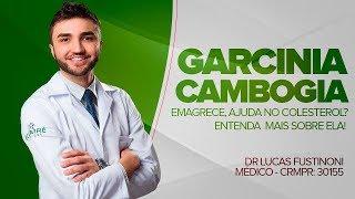 GARCINIA CAMBOGIA - EMAGRECE MESMO? FUNCIONA? - Dr Lucas Fustinoni - Médico - CRMPR 30155
