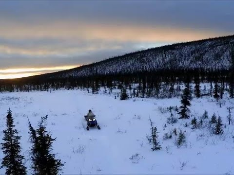 Zero prawie absolutne - Alaska. Ostatni przystanek - Discove