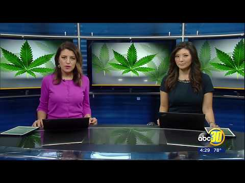ABC30 Action News Features Canna-Hub Business Community in Fresno County, California