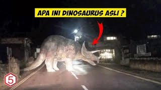 Dinosaurus Pernah Tertangkap dizaman modern ? inilah Bukti Penangkapan Dinosaurus