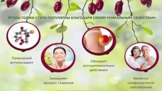 Где купить ягоды годжи, Обзор рецептов для похудения я