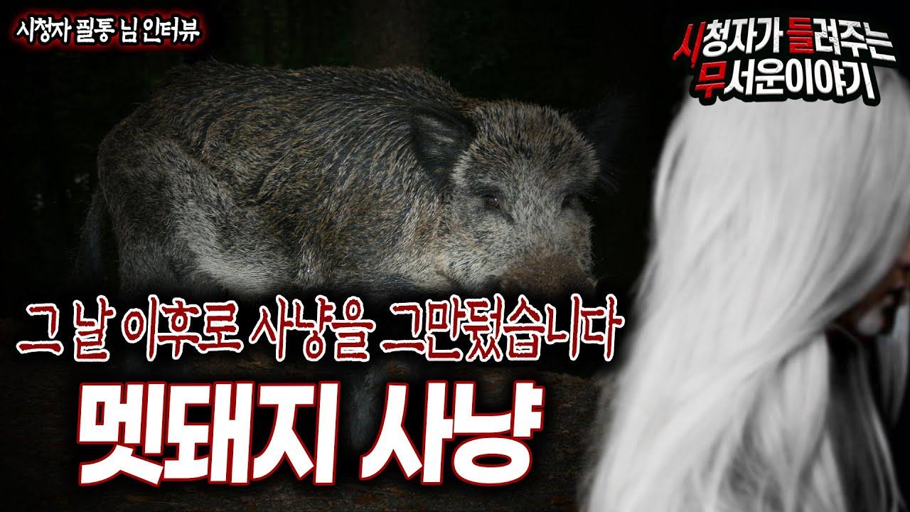 [무서운이야기 실화] 그 날 이후로 멧돼지 사냥을 그만 두게 된 소름끼치는 이유ㅣ필통 님 사연ㅣ돌비공포라디오ㅣ괴담ㅣ미스테리 인터뷰ㅣ시청자 사연