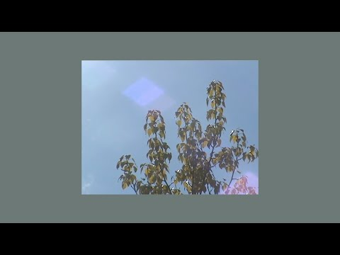 taylor swift type instrumental – like rainbows