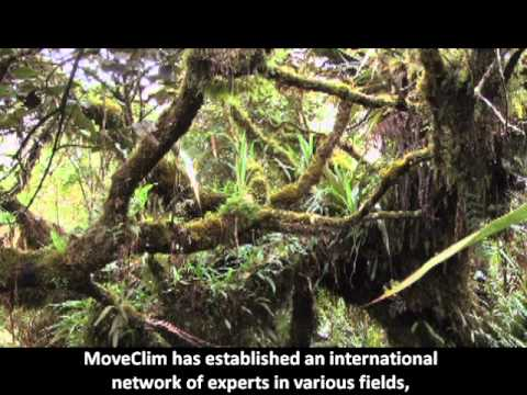 Moveclim, Montane vegetation as listening posts for climate change
