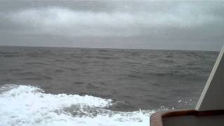 ANDIAMO ROUGH SEAS.mp4