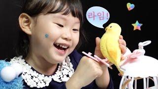 따라쟁이 앵무 라임이의 말하는 애완동물 장난감 놀이 LimeTube & Toy 라임튜브