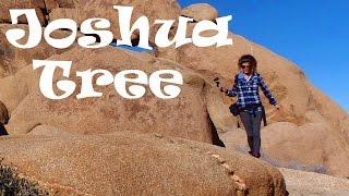 A Tour of Joshua Tree National Park, California: Desert Paradise