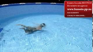 видео Надувные детские бассейны, детские жесткие бассейны Intex