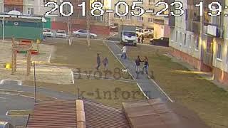 Собака укусила мальчика на Лермонтова в Сургуте