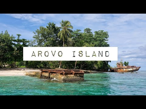Arovo Island, old hotel resort and dolphins in Bougainville, Papua New Guinea
