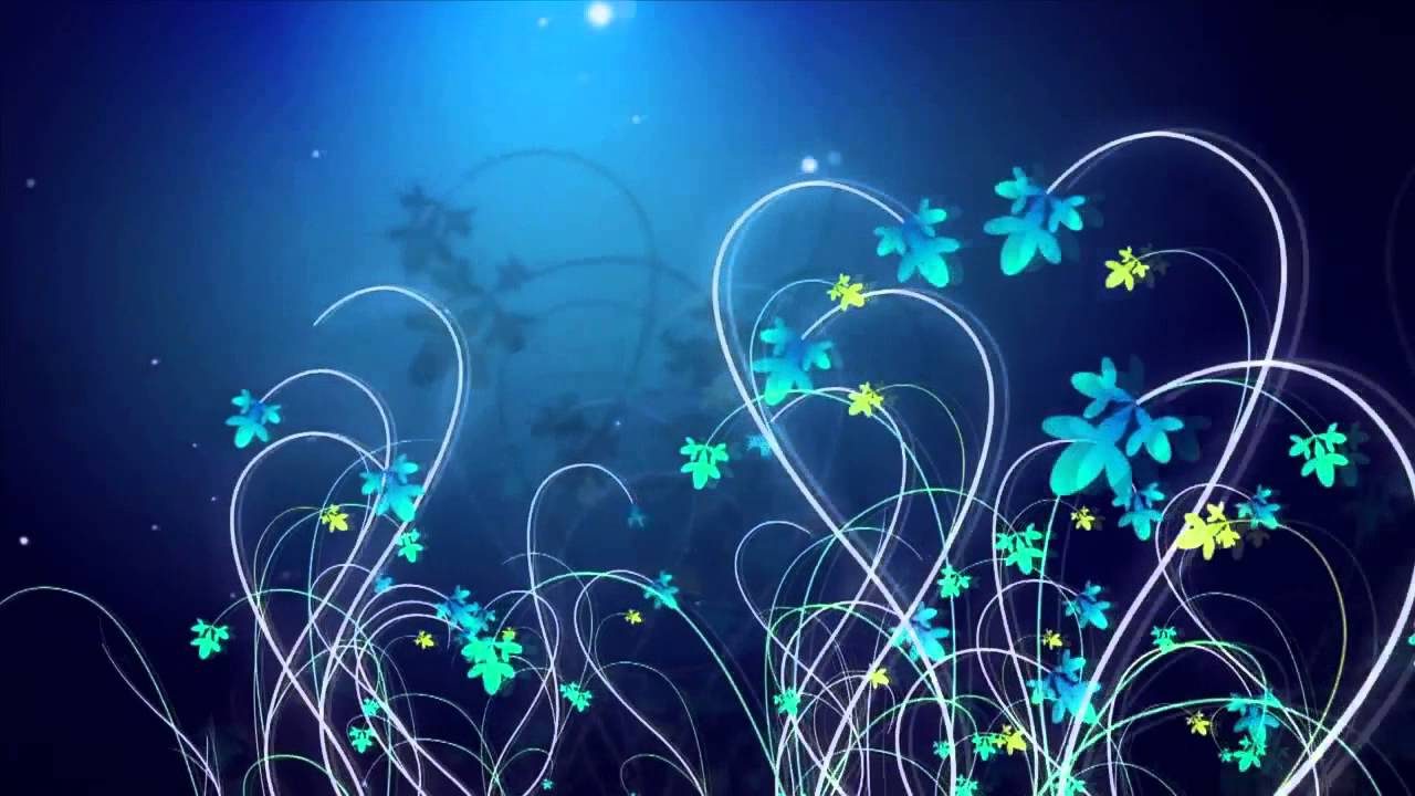 Футажи цветы