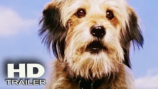 BENJI - Trailer 2018 (Gabriel Bateman, Darby Camp) Family Movie