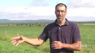 Culture de saveurs et l'agroalimentaire portneuvois 4 :  Élevage bovin St Gilbert