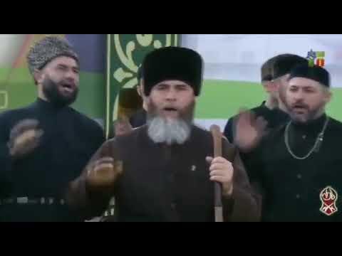 Зуькар Назам Нохчий чоь Салахь Межиев Чечня!